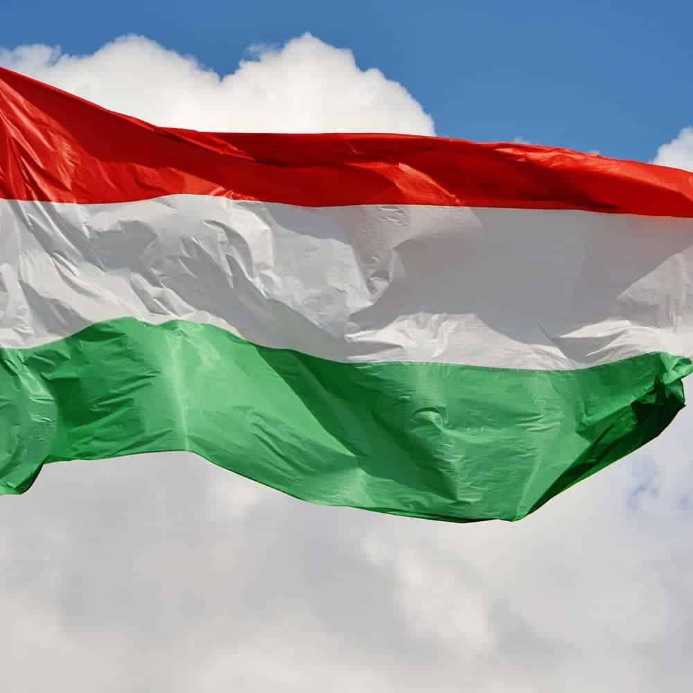 Übersetzungen Ungarisch